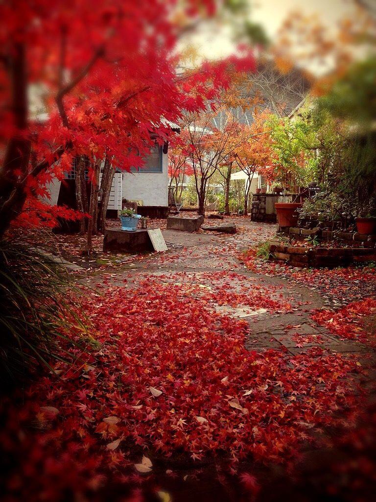 まなびの秋
